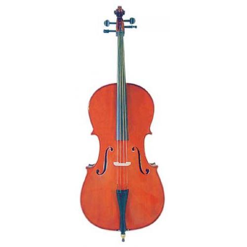 Enrico Cello Student II