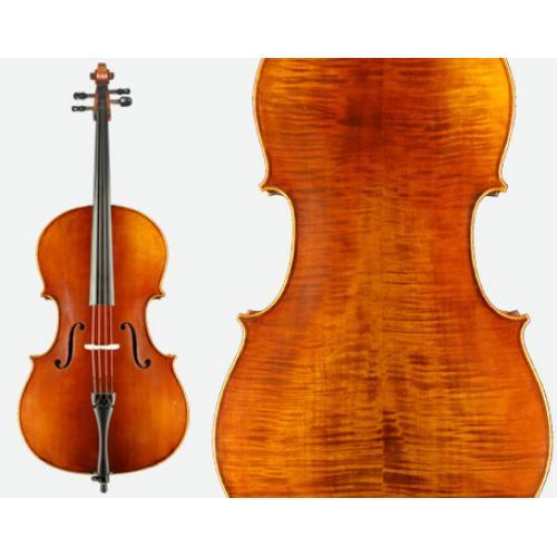 Otto Cello VC310