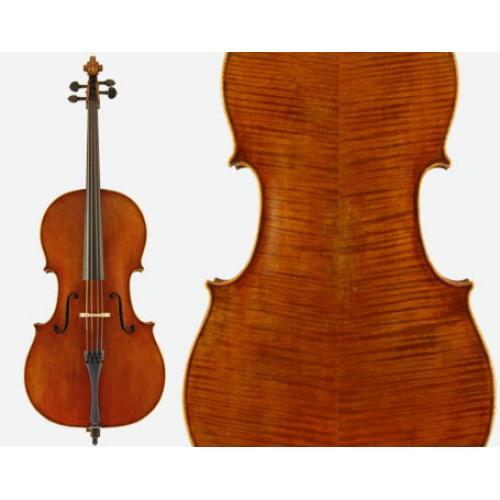 Otto Cello VC530