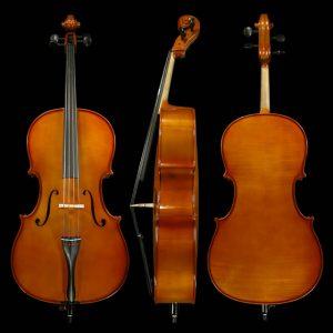 Gliga I Cello Outfit Standard Finish 4/4