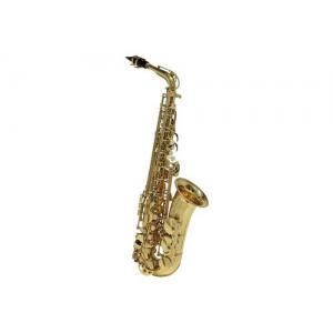 Conn Selmer Student Alto Saxophone CS651