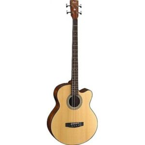 cort_sjb5f_acousticelectric_bass