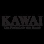 kawai-black