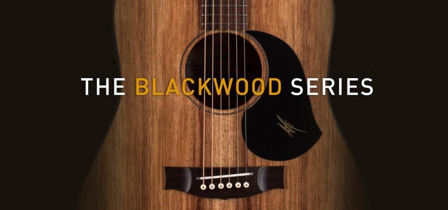 Maton Blackwood Banner