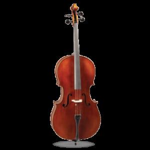 Amati Cello #7